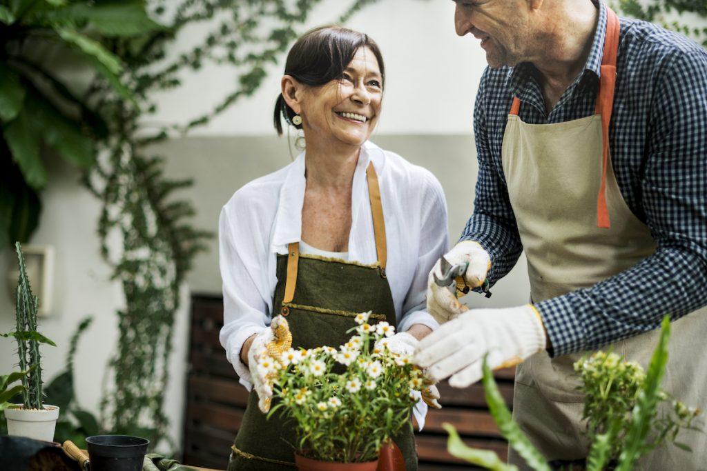 Easy garden jobs to do in spring